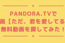 映画【ただ、君を愛してる】はPandoraで見れるか探してみた!